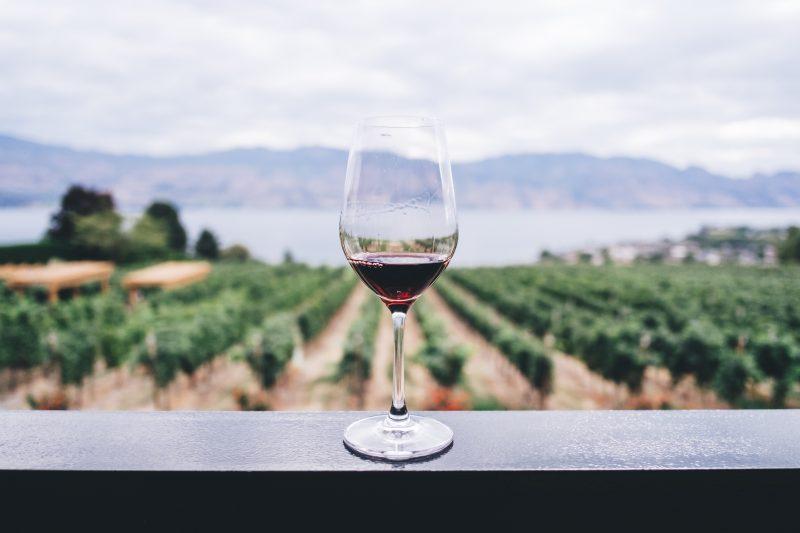 vad är vin